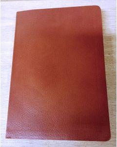Bibel 1917 brun