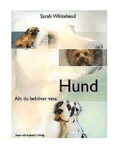 Hund : allt du behöver veta