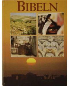 Bibel 1917 GT och 1981 NT