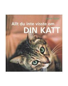 Allt du inte visste om din katt