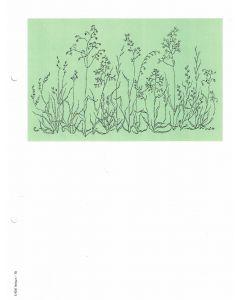 Minnesblad utan text- gräs,tecknat, 25-p
