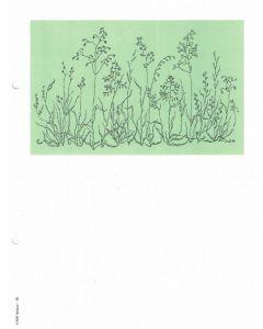 Minnesblad utan text -gräs.fotografi 1st