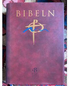 Konstskinnbibel
