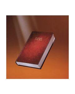 Bibeln : Bibel 2000 med noter, parallellhänvisningar och tillägg : Gamla testamentet, Apokryferna, N