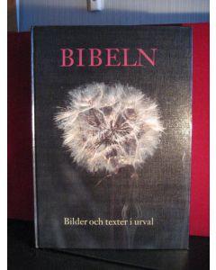 Bibeln Bilder och texter i urval