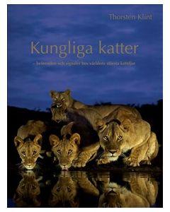 Kungliga katter : Beteenden och signaler hos världens största kattdjur