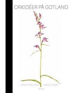 Orkidéer på Gotland