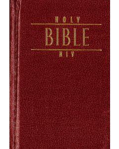 Engelsk Bibel Good News röd
