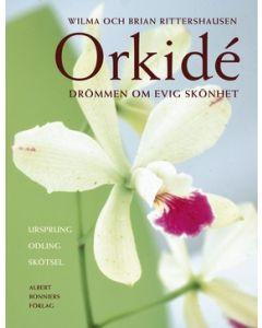 Orkidé : Drömmen om evig skönhet