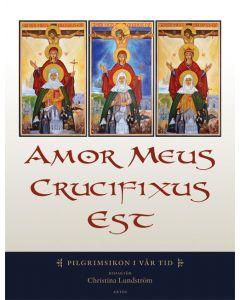 Amor meus crucifixus est : pilgrimsikon i vår tid