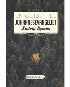En guide till Johannesevangeliet