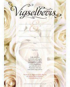 Vigselbevis - rosor 10st/fp