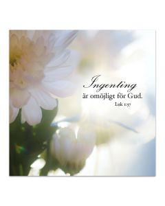 Magnet - Ingenting är omöjligt för Gud